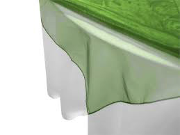 All Events Africa Organza Overlays 1,5m-x-1,5m Green