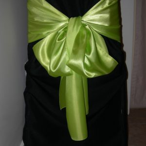 All Events Africa Satin runner or tieback Lime green